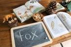 fox lesson
